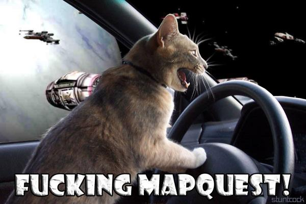 cat maps