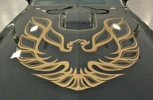 pontiac firebird hood firebird