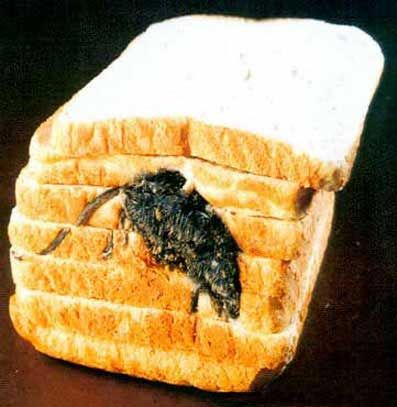 mouse-in-bread