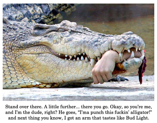 Alligator punching