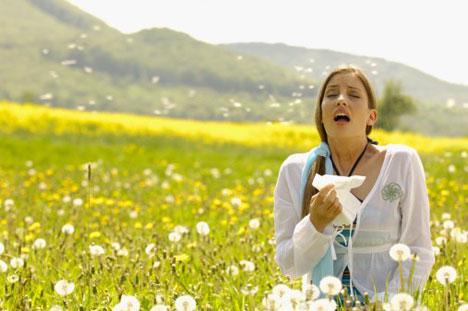 pollen-helps-allergies-phot[1]
