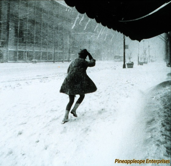 Miniskirts_in_snow_storm[1]
