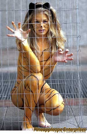 actual-liger